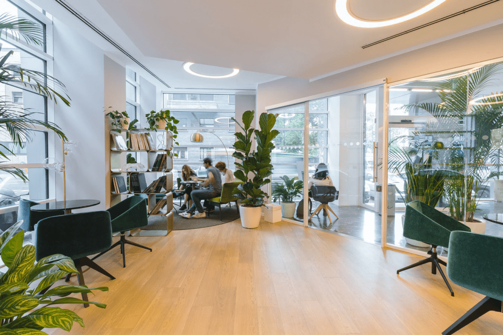 Inside an open space office  with lots of plants
